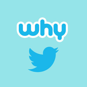 Why Use Twitter for Business